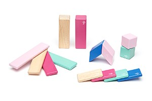 Tegu 14-Piece Magnetic Block Set
