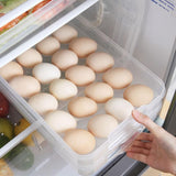 Double Layer 40 Grids Egg Storage Box Frozen Freeze Multipurpose Food Storage Box with Lid