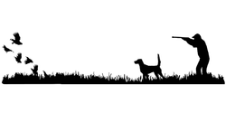 English Setter (high tail) Bird Dog, Quail Rise Upland Hunting Scene Decal