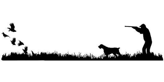 Wirehair Bird Dog, Quail Rise Upland Hunting Scene Decal
