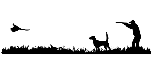 English Setter (high tail) Bird Dog, Rooster Pheasant Upland Hunting Scene Decal