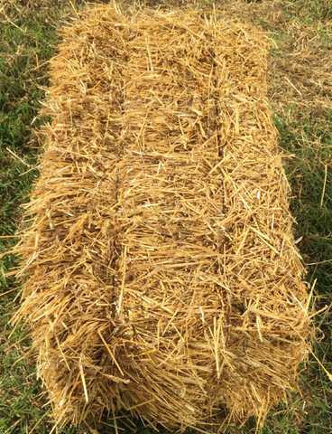 Straw bales (small squares)