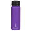 20oz Insulated Water Bottle w/ Flip Cap - Purple