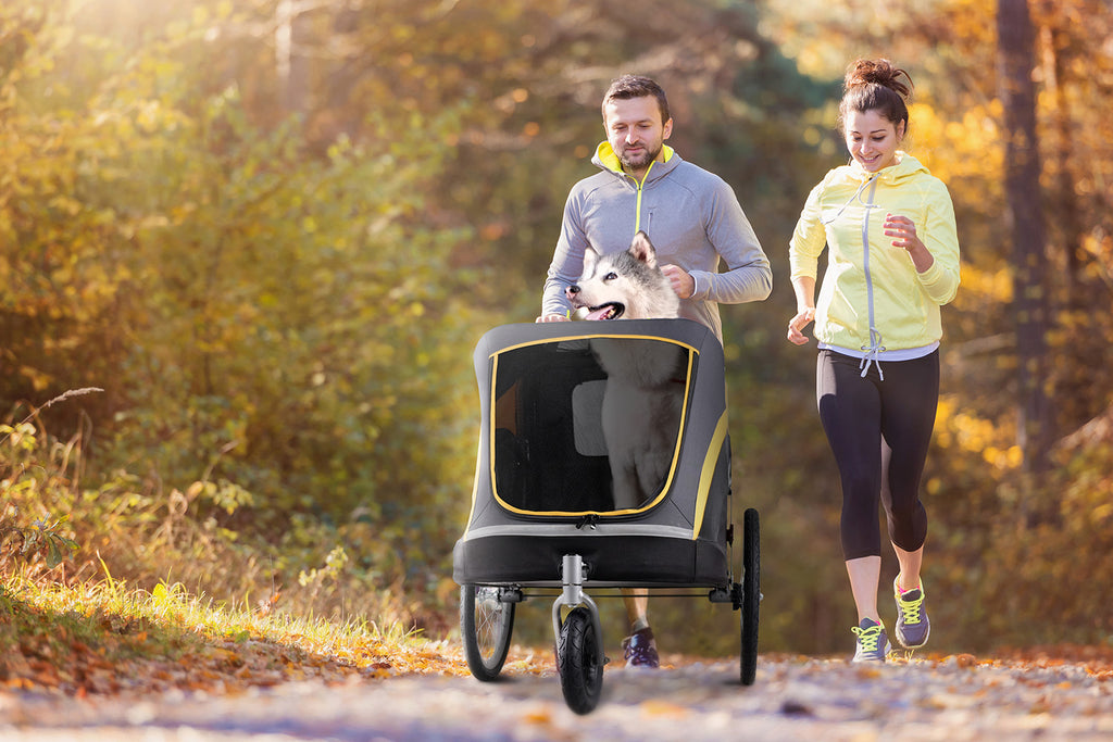 Pet Strollers: Why You Need To Own A Pet Stroller