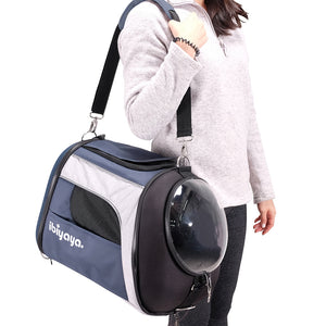 Explorer Airline Transparent Pet Carrier