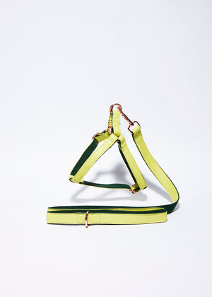 'Lime' Step In Harness Set