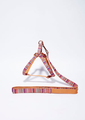 'Summer' Step In Harness Set