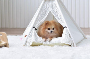 lace pet teepee