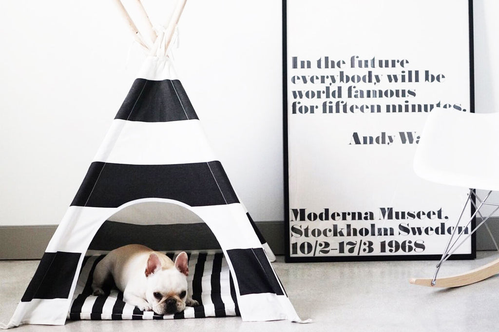Black & White Stripe Teepee With Mat