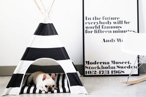 Black & White Stripe Pet Teepee With Mat