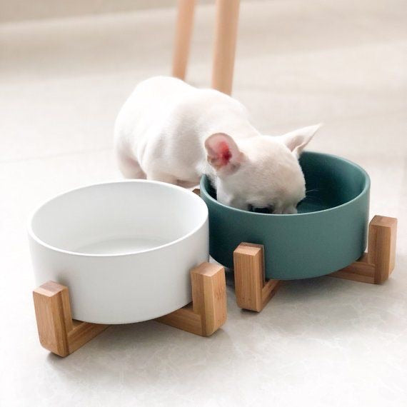 Ceramic Bowl with Wooden Stand in Green