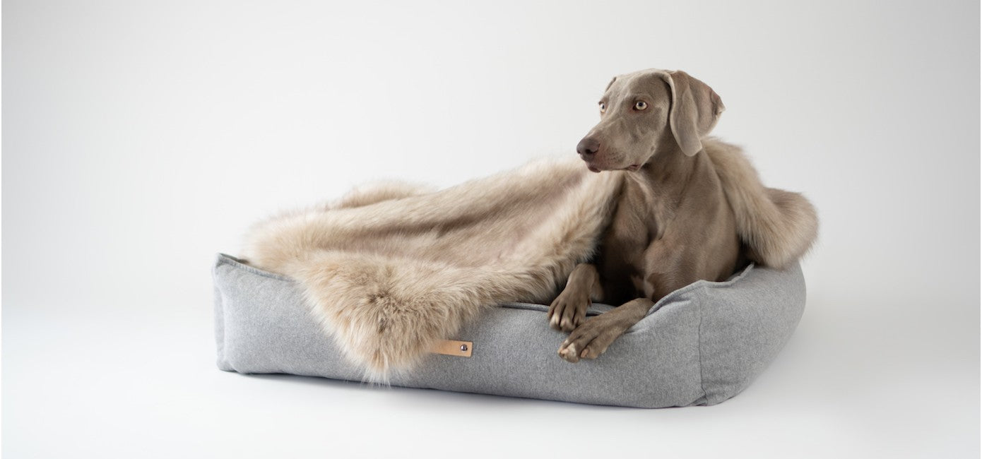MØVIK Dog Bed in Grey