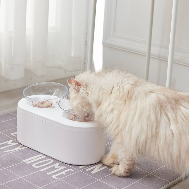Double Cat Bowl Feeder with Storage Space