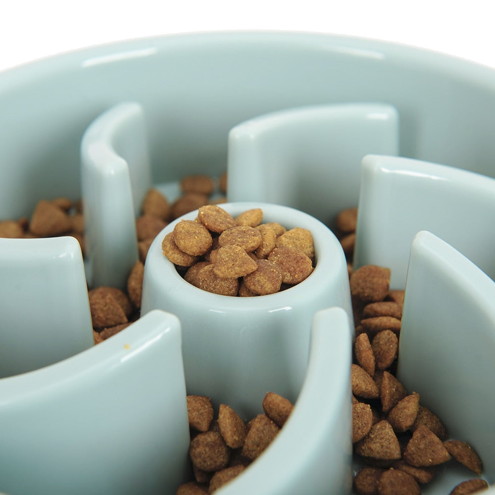 Slow Training Pet Feeder in Pastel Blue