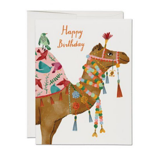 Red Cap Cards - Camel Birthday Card