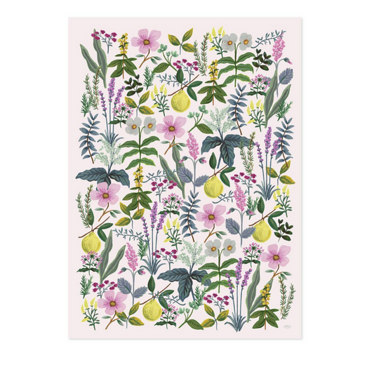 Rifle Paper Co. - Herb Garden Wrapping Sheet