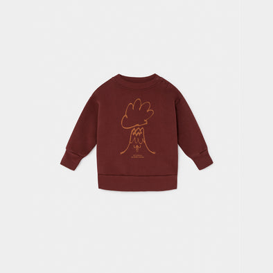 Volcano Sweatshirt- Str. 62-98 - Bobo Choses