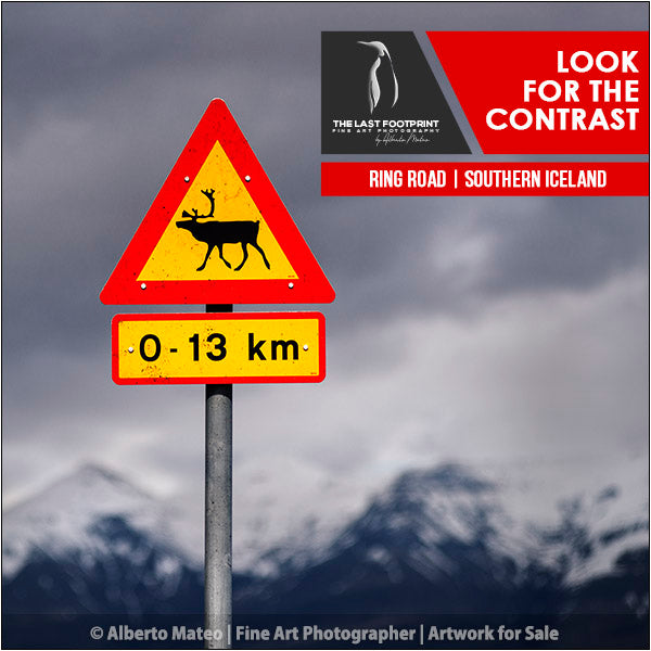 Wildlife Warning Plate and Mountains - Iceland