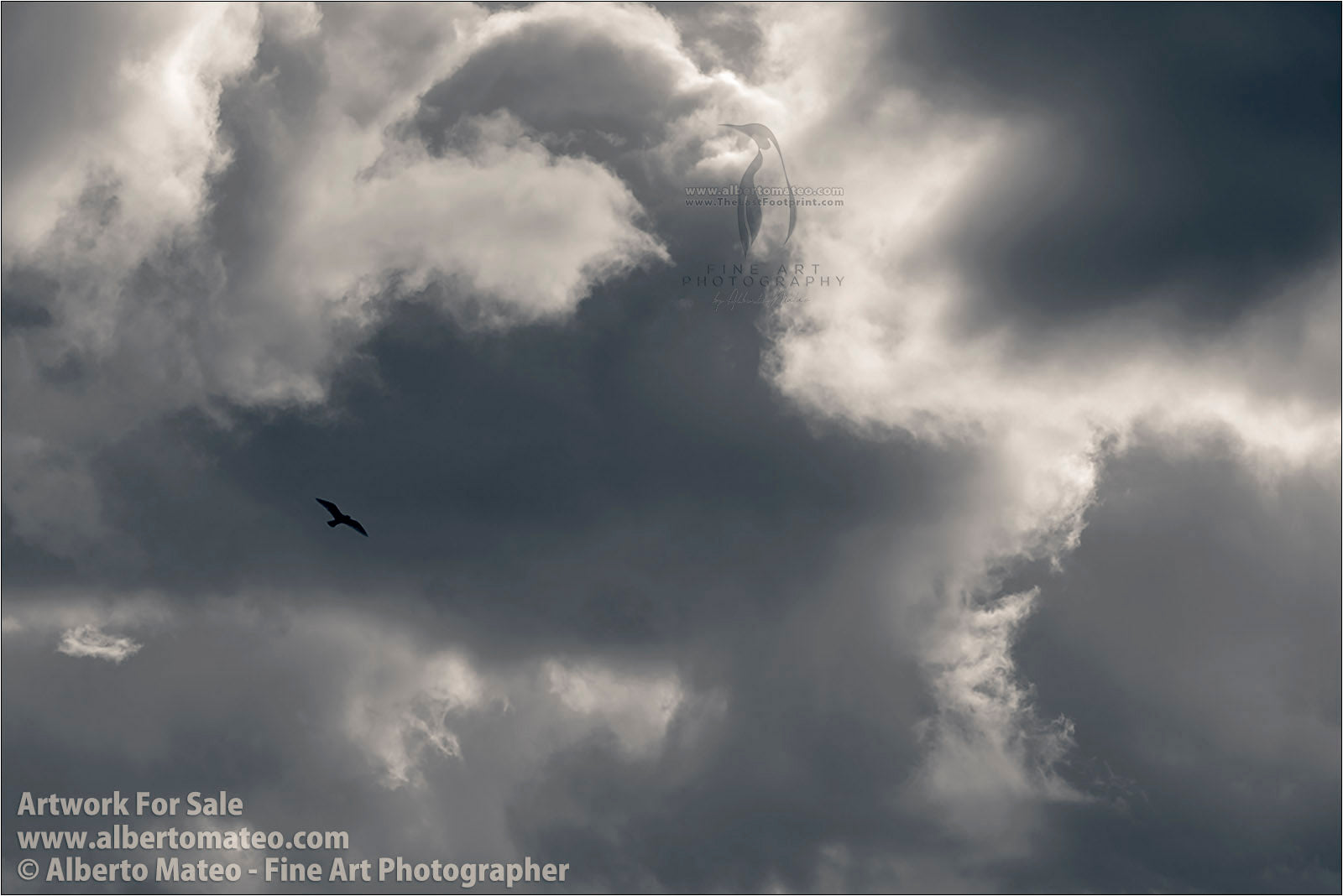 Segull and Clouds, by Alberto Mateo. Fine Art Photography.