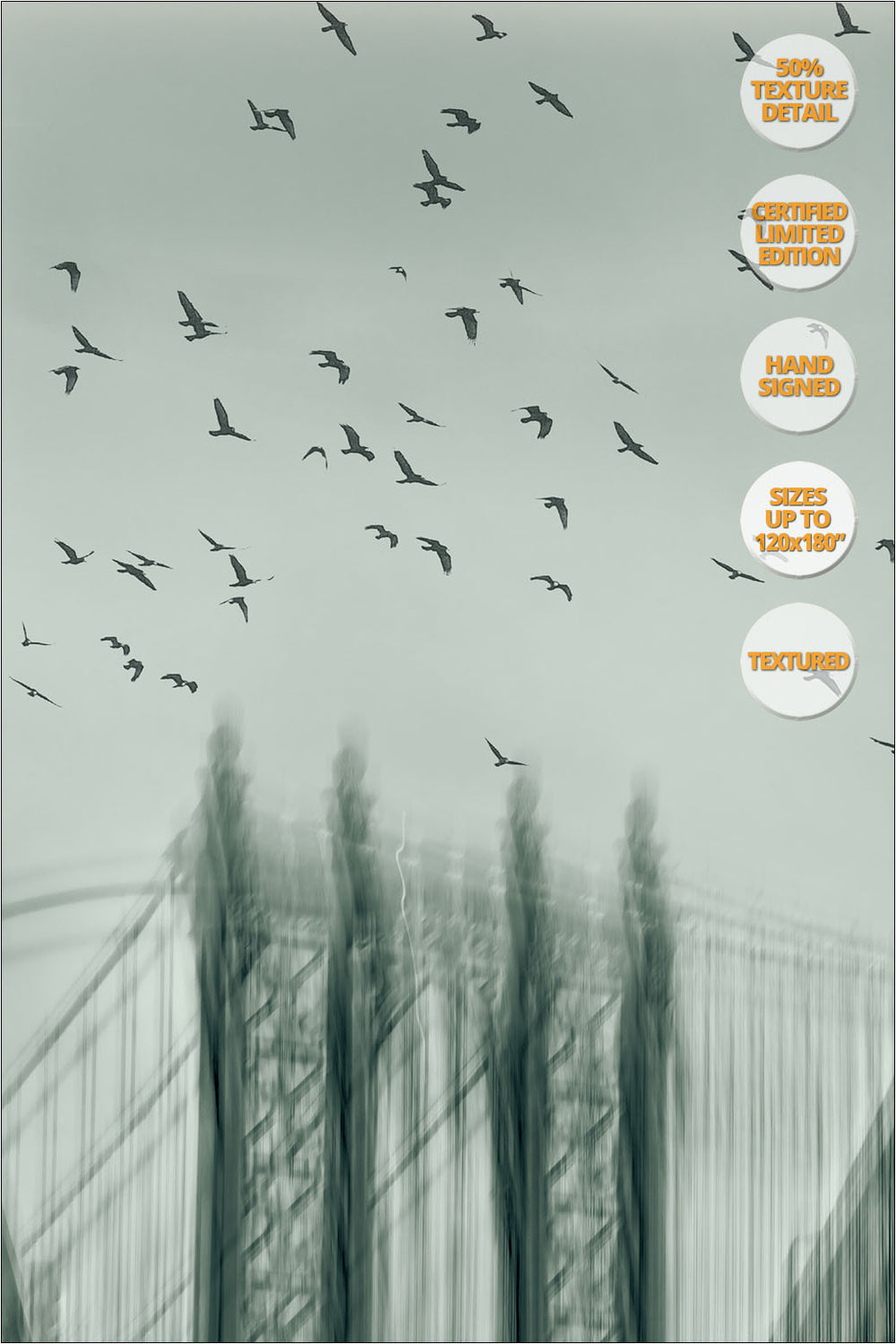 Manhattan Bridge, 'Way to Freedom' Series. | 50% Magnification Detail.