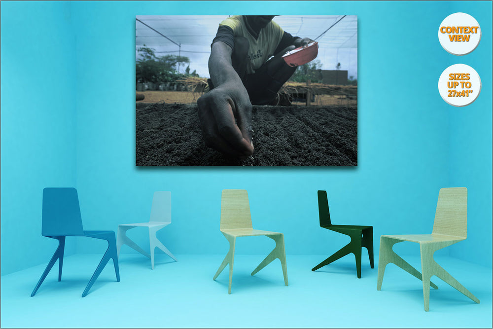 Man planting seeds, Mangochi, Malawi. | Print hanged in meeting room.