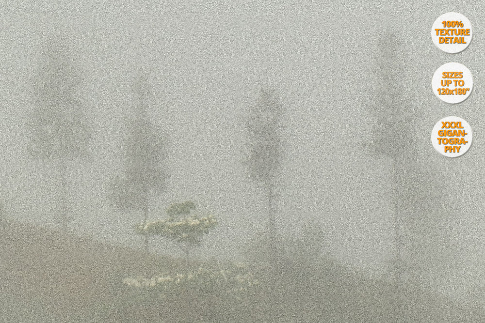 Fog in Bac Ha Mountains, Vietnam. | View at 100% magnification detail.