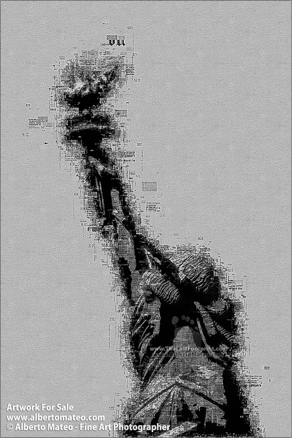 The Statue of Liberty, Manhattan, New York. | Already Written Series.