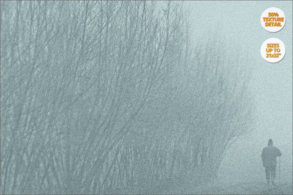 Fog in crop fields, Brugine, Italy. | 50% Detail.