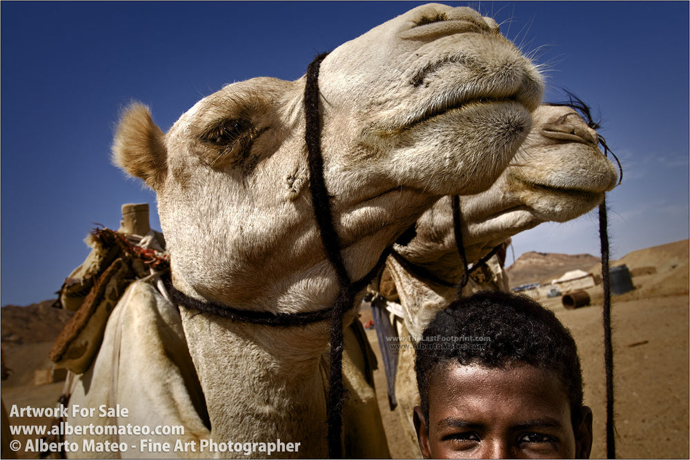 Bedouin boy keeping camels, Marsa Alam, Egypt. | By Alberto Mateo.