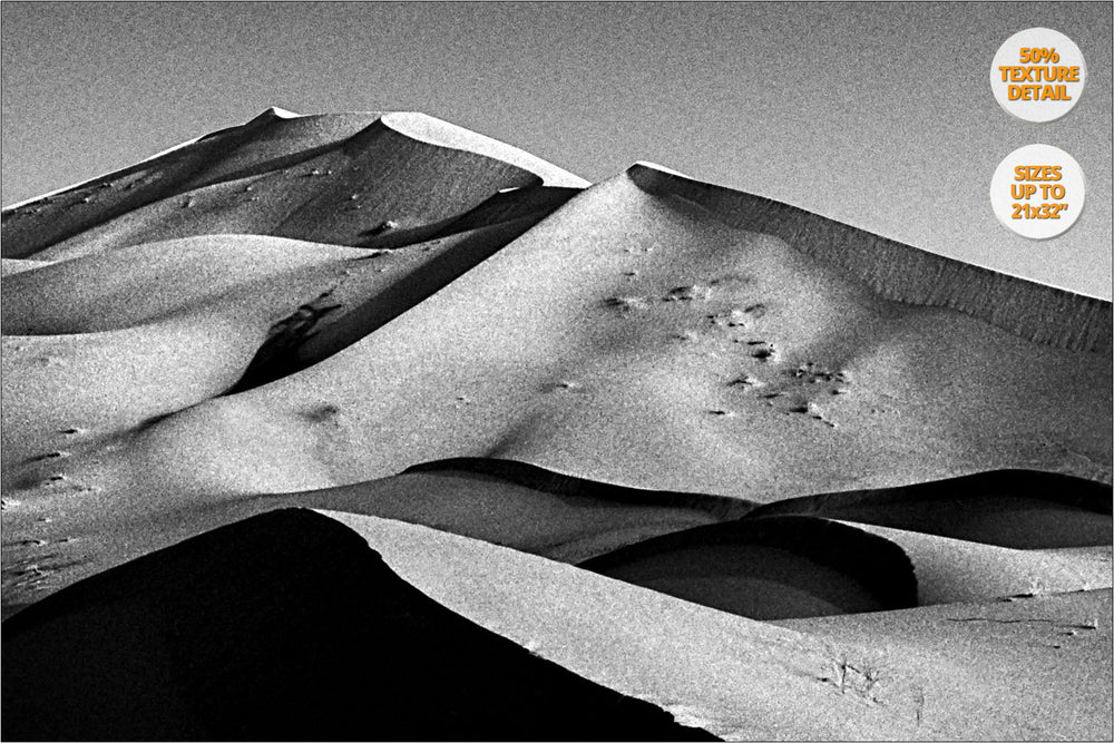 Dunes at sunrise in the Sahara Desert, Morocco. | 50% Detail.