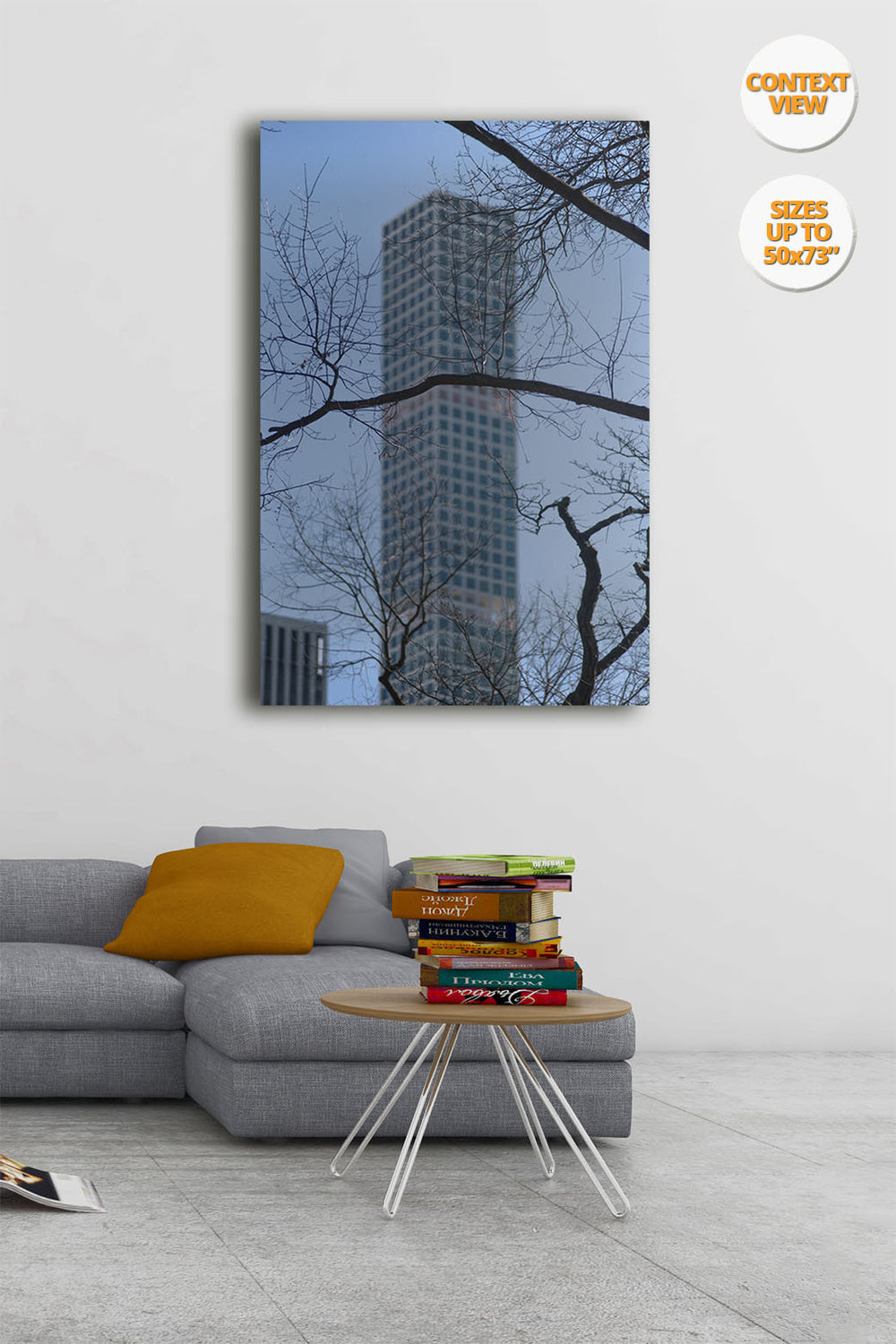 The Hive from Central Park, Manhattan, New York, US. | Print hanged in living room.