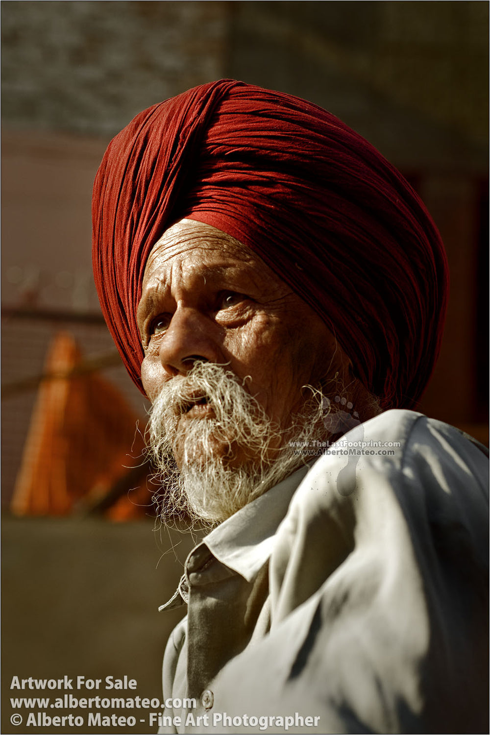 Portrait of a Sikh, Chandigarh, India. | Open Edition Fine Art Print.