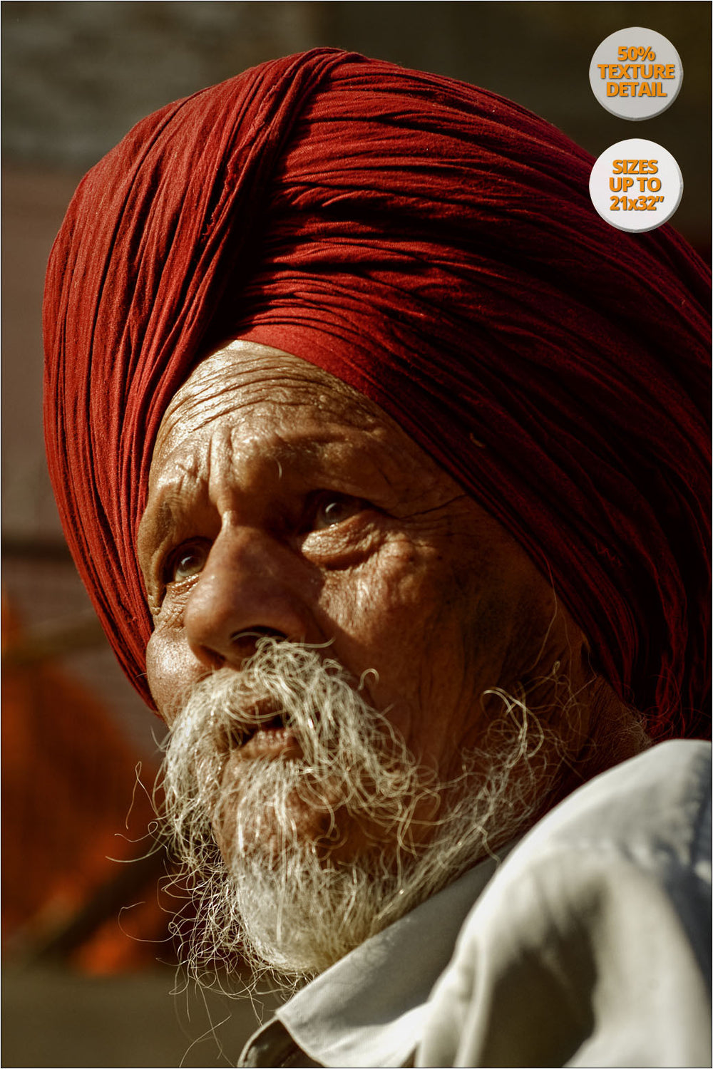 Portrait of a Sikh, Chandigarh, India. | 50% Magnification Detail View.