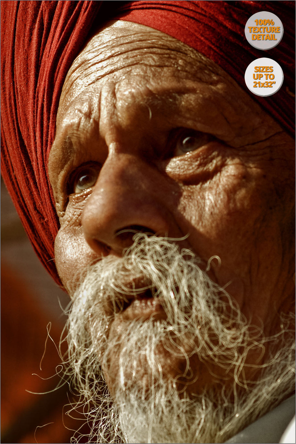 Portrait of a Sikh, Chandigarh, India. | 100% Magnification Texture Detail.