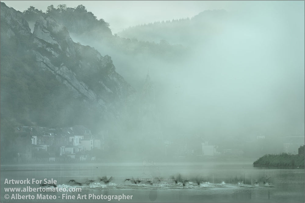 Flock of ducks, river Meuse, Dinant. | Open Edition Print.