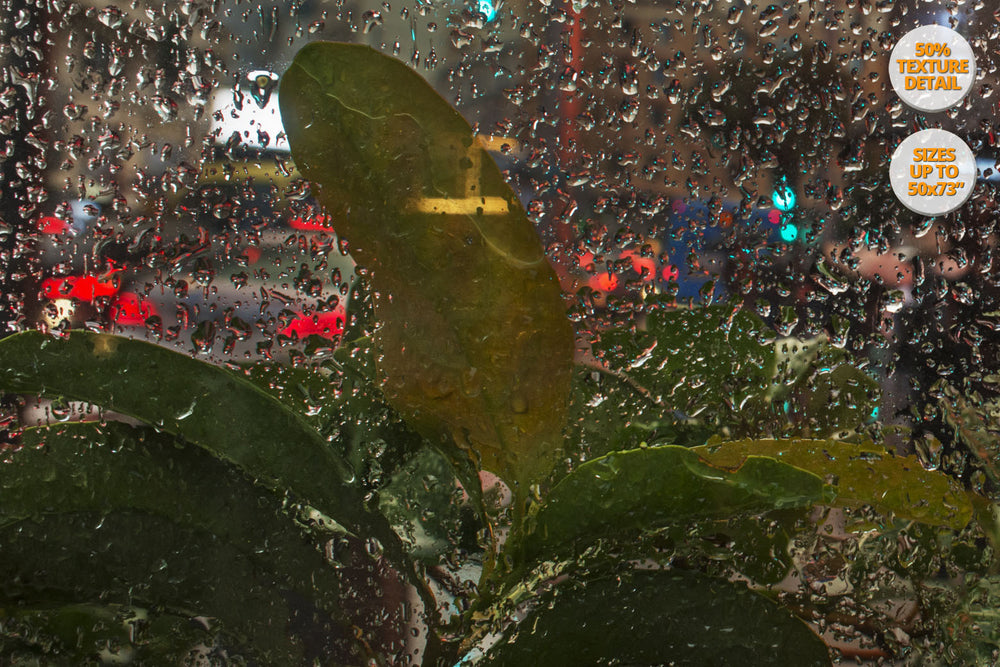 Rain in the Gran Via, Madrid. | 100% Magnification Detail View of the Print.