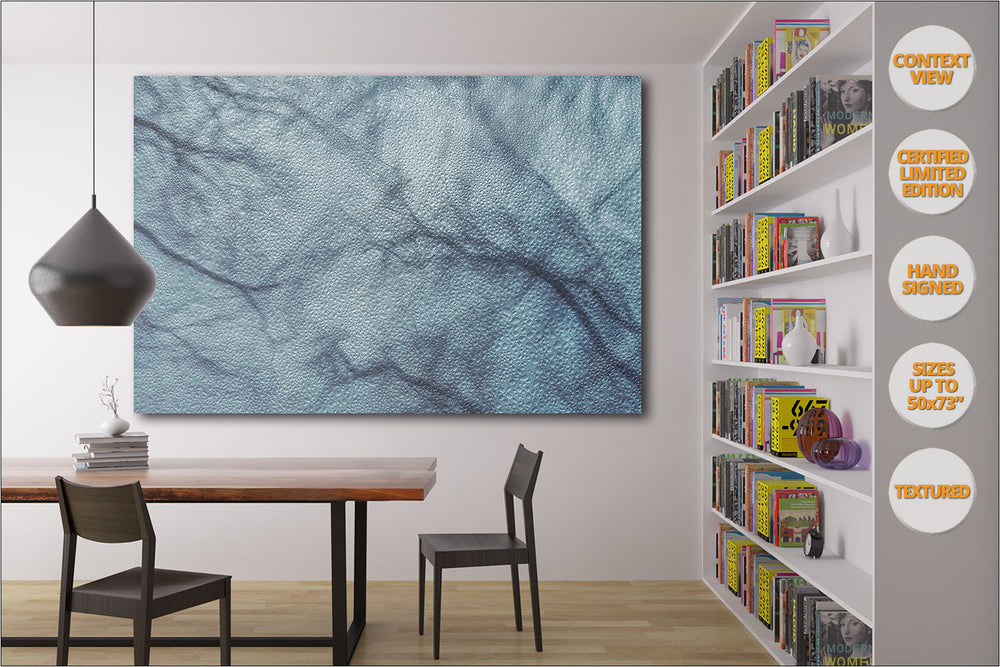 Tree branches in Winter, Central Park, NYC. | View of the Print hanged in reading room.
