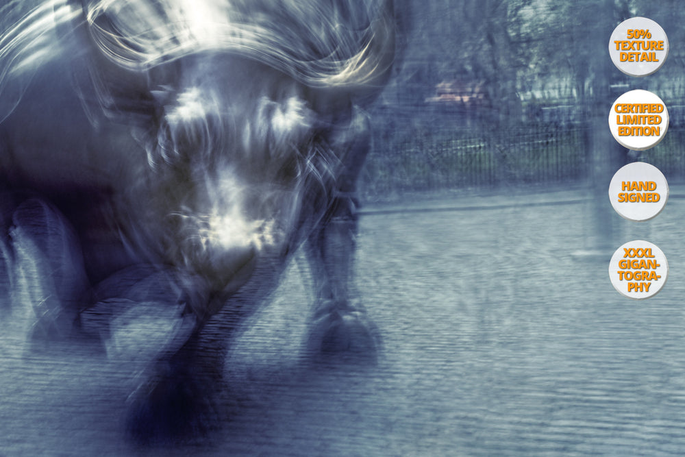 The Bull in Wall Street, Manhattan. | 50% Magnification Detail.