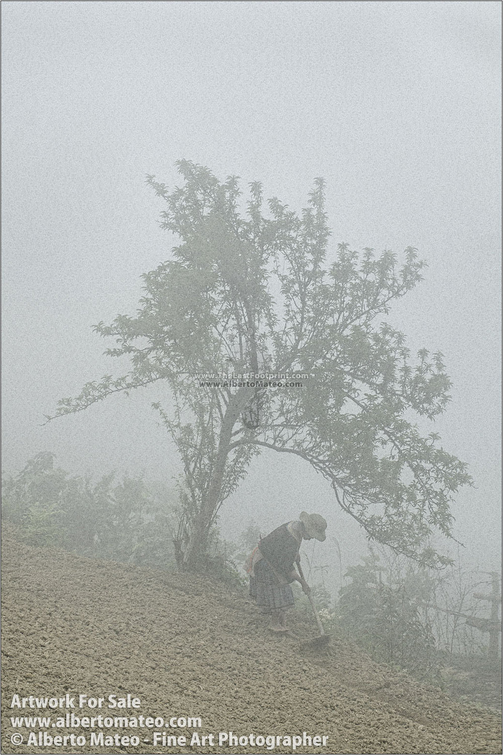 Hmong woman sowing in the fog, Bac Ha, Vietnam. | Open Edition Print.