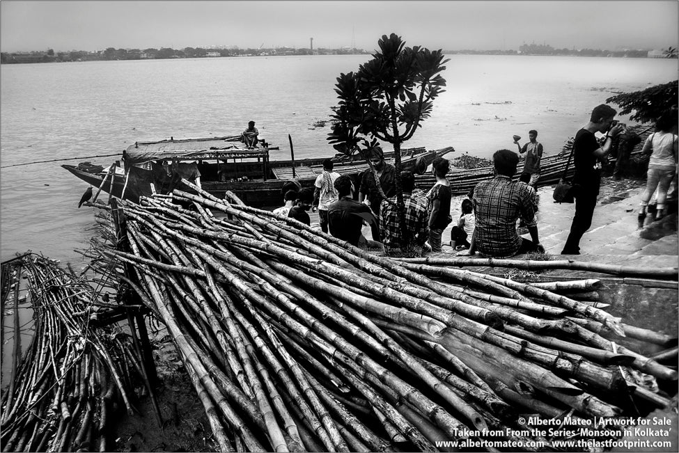 Bamboo wood, Hooghly River Kolkata, Bengal, India.