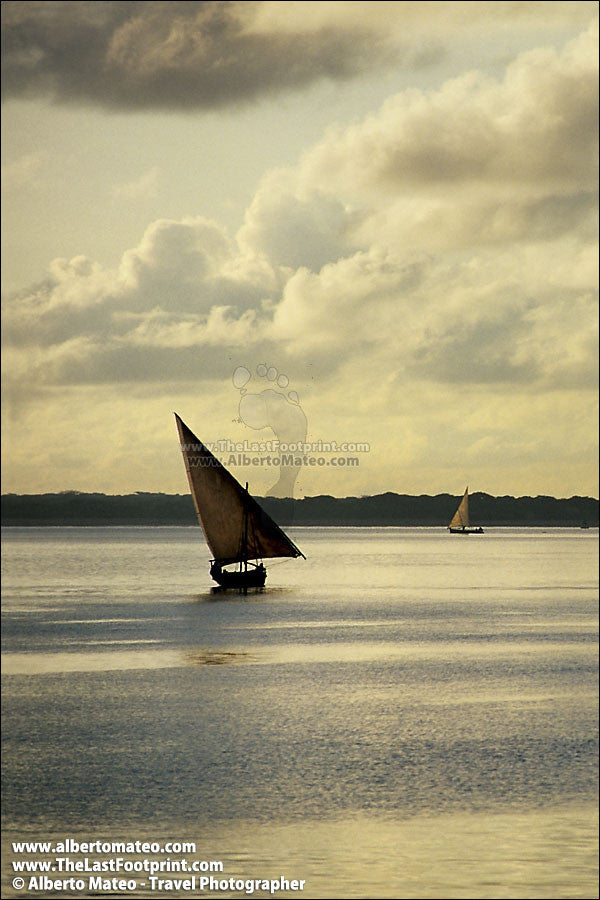 Dhows at sunrise, Lamu Island, Kenya.