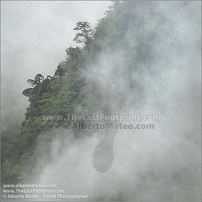 Fog in Bac Ha Mountains, Vietnam. | Cropped for Facebook.