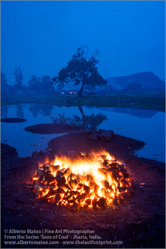 Bonfire and Tree at Dusk, Sons of Coal Series.