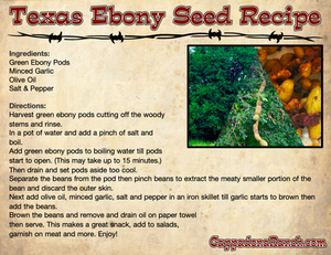 Texas Ebony Seed Recipe