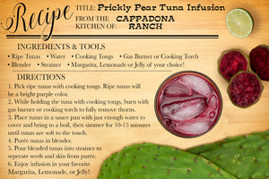 Prickly Pear Tuna Lemonade