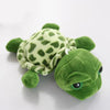 Image of Turtle Plush Toy