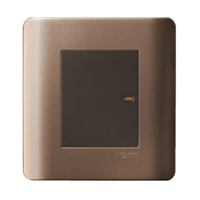 Schneider - ZENCELO Silver Bronze Series - Switches & Sockets