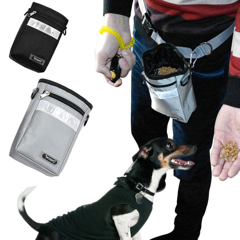 Reflective Dog Treat Bag