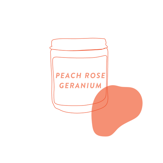 Peach Rose Geranium Stocking Stuffer