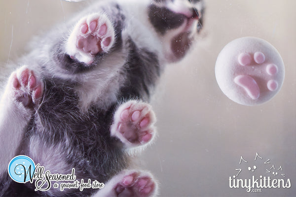 #GivingTuesday - Well Seasoned <3 TinyKittens